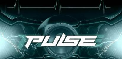 Pulse Festival at the Casman Centre - Saturday, June 9