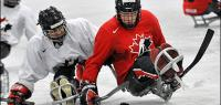 Join us for sledge hockey on Family Day!