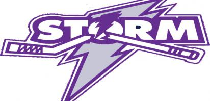 Storm Go Purple For Family Violence Month